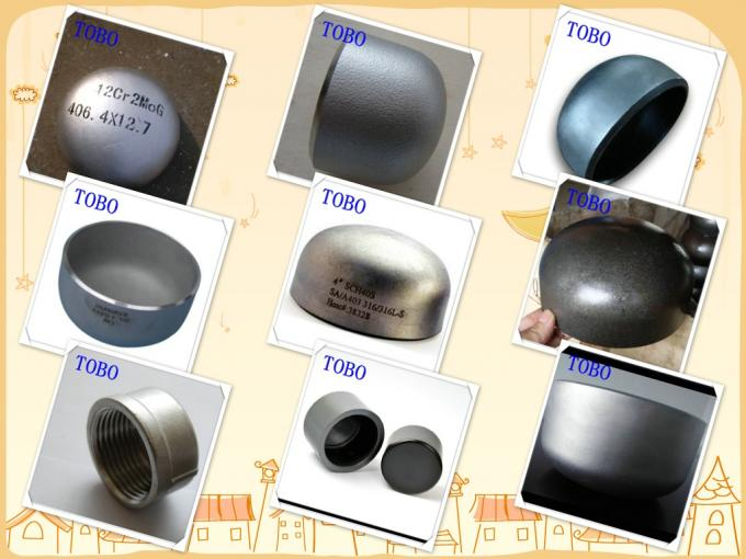 TOBO Butt Welding Fitting Pipe Caps Sch 40 Carbon Steel Vent