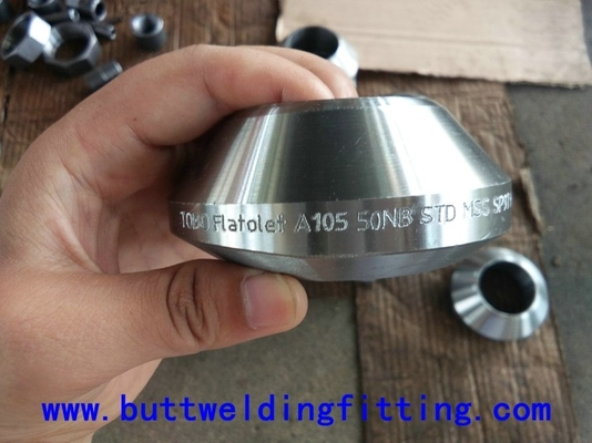China Butt Welded Pipe Fittings Stainless Steel Inlet / Outlet Fittings Thread Weldolet 1/2-20 inch supplier