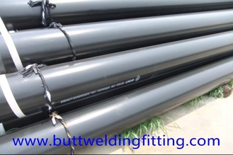 "China 10"" SCH STD ASTM A106 Gr.B API Carbon Steel Pipe / CS SMLS Pipe supplier"