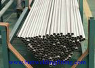 China Boiler / Structural Seamless Stainless Steel Tubing Small Diameter A/SA268 TP446-1 supplier