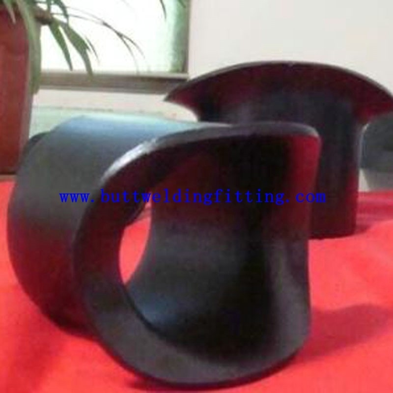 Forged Stainless Steel Seamless Butt Weld Fittings O-LET Sweepolet
