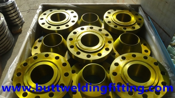 Industrial Hot Dip Galvanizing Forged Steel Flange ASME High Precise